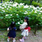 新成田リフォーム店 7月1日 OPEN