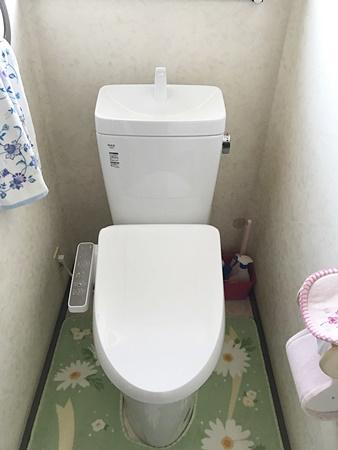 ナチュラルなトイレ
