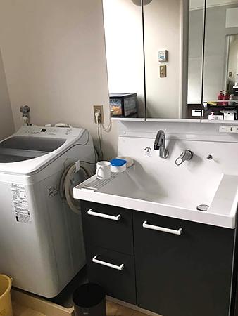 洗面ボウルの大きな洗面台