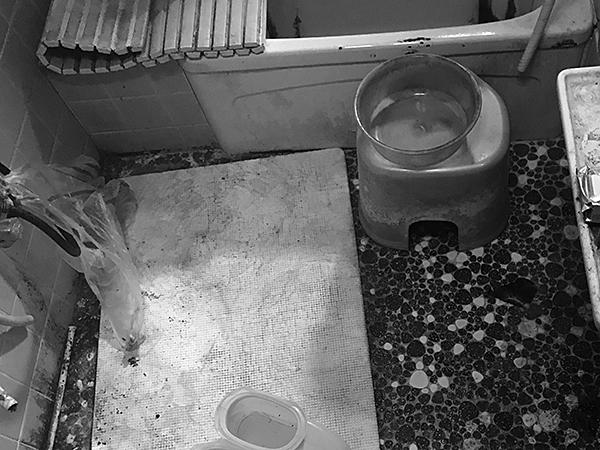 茨城県神栖市浴室リフォーム|保温性能が上がり快適に